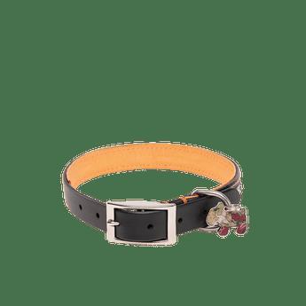 Mascotas-25AING-NEGRO_1