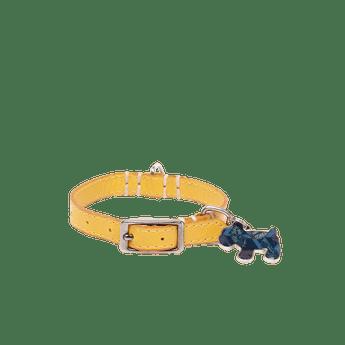 Mascotas-25AUAM-AMARILLO_1